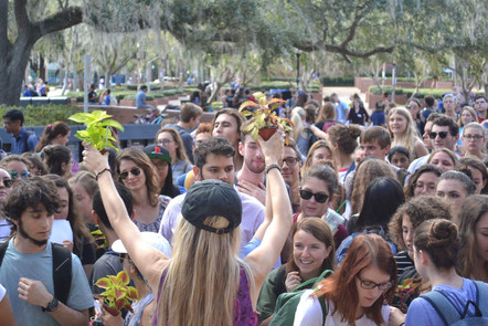 UF Plant Drop with Grace