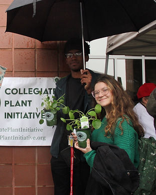Cornell studens enjoying their free Peace Tre Farm plants after a Plant Drop