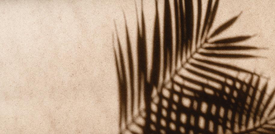 tropics-minimalist-abstract-blurred-back