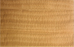 sapele-veneer-pommele-medium-figured