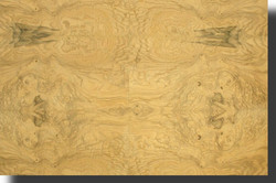 ash-veneer-olive-burl-medium-figure