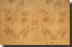 oak-burl-veneer-medium-figure