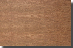 eucalyptus-veneer-burl