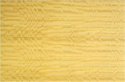 satinwood-veneer-ceylon