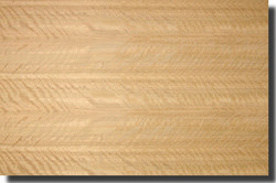 eucalyptus-veneer-figured