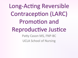 Version 1:LARC Promotion and Justice