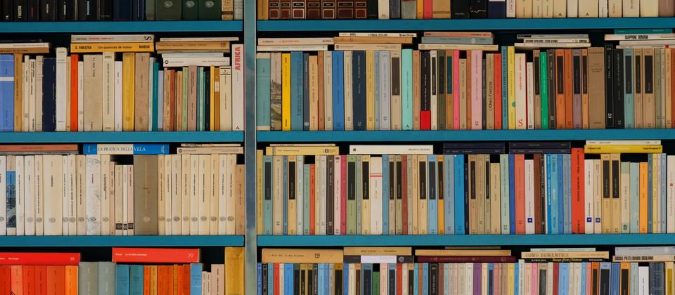 Mendel arriva in libreria
