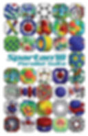 Spartan'18 Brochure Cover.jpg