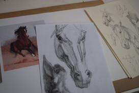 Hestetegning-700x467-700x467.jpg