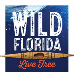 Wild Florida.jpg