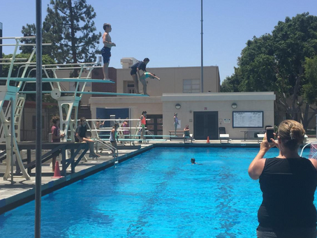 The 5 Reasons to Try Springboard Diving Lessons