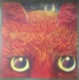 Animal Mystiques.jpg