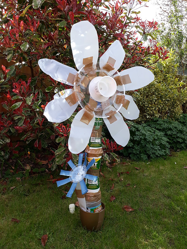 Lucy Oliver WILD recycled art.jpg