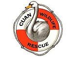 Cuan Wildlife Trust Logo.jfif
