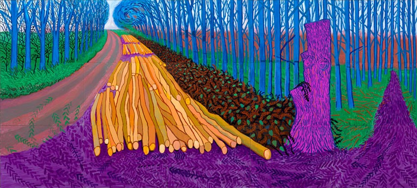 Fiona inspirational artist David  Hockney