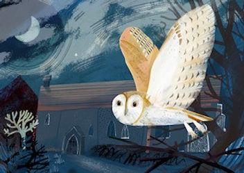 Bricett Owl by Jeremy Keeling.jpg