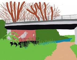 bridge magpie matt sewell