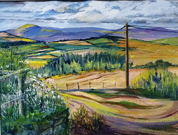Summer View from Snailbeach Mine (unfram