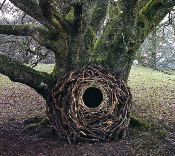 Mike inspirational artist Andy  Goldsworthy