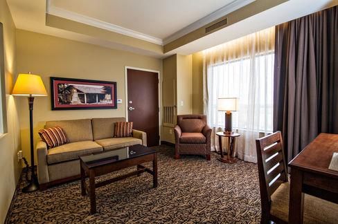hotel_suite_living_side.jpg