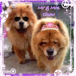 Zany & Churinga