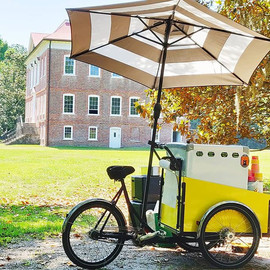 Doris Daisy loves Drayton Hall! _#gelato