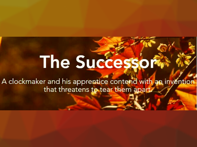The Successor (fiction, romance)