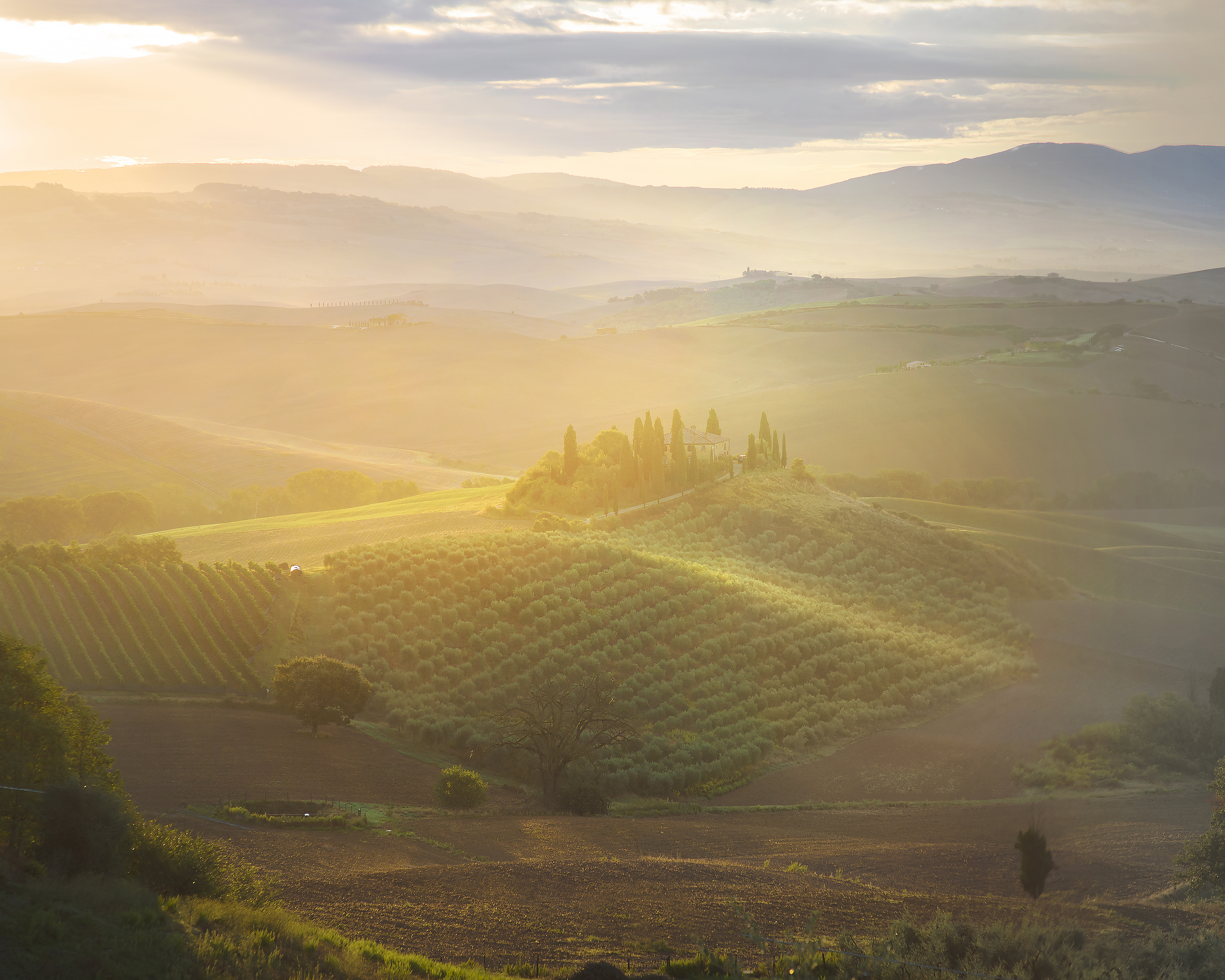 Sunrise in the Val D'Orcia