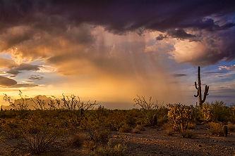 desert by Saija Lehtonen.jpg