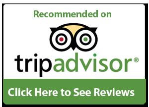 tripadvisor-reviews.png