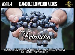 Primicias-2021 web