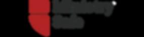ministrysafe+logo+(2016).png