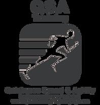 QSA_APP_logo_2017_3_preview_rev_1.png