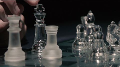 Life of a Chess Master (2017)