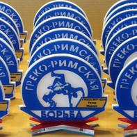 Награды для борцов