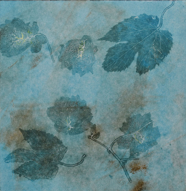 Fallen Leaves, monoprint