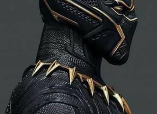 New King in Wakanda!