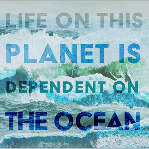 """Life on this planet is dependent on the ocean""    - Dr. Howard Dryden, GOES Foundation"