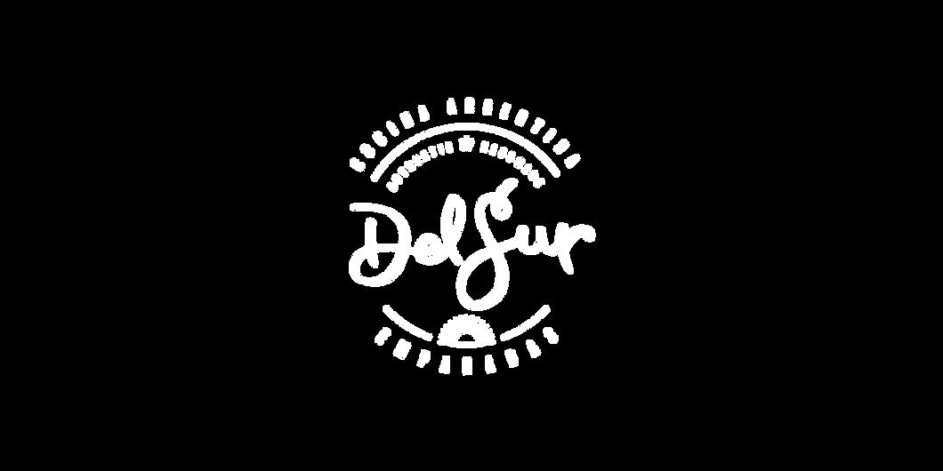 DelSur-logo-web01-01.png