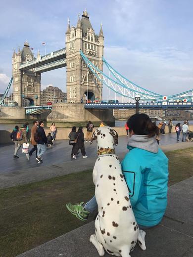 Visita a Londres