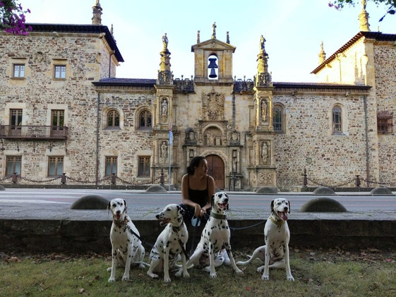 Antigua universidad Sancti Spiritus (Oñati)
