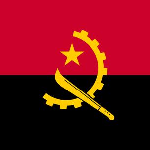 Autoritarismo e descolonização: as relações entre a ditadura militar e a Independência de Angola