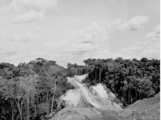 A pandemia e a estrada
