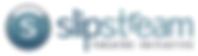 SSTI 2020 Logo.PNG