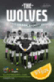 The-Wolves-4x6_vA3_Page_1.jpg