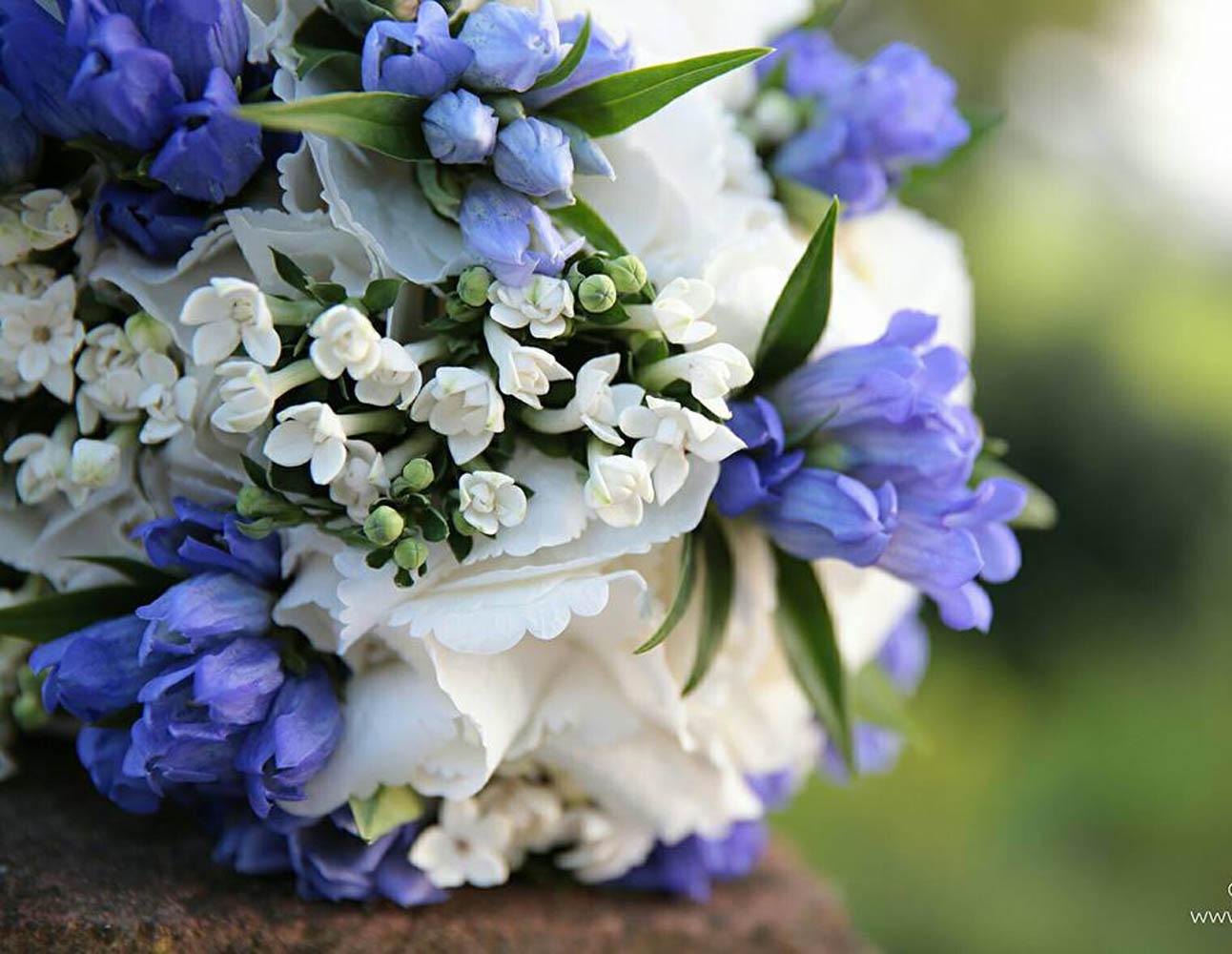 flowerart4
