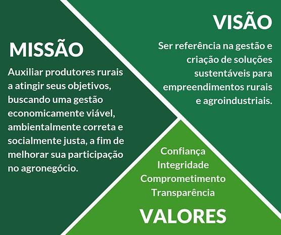Missão, visão, valores opção 2.png