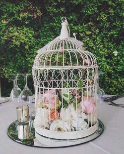 Round Birdcage