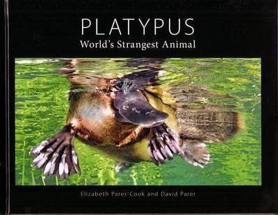 Platypus - World's Strangest Animal