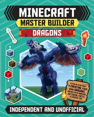Minecraft Master: Builder Dragons